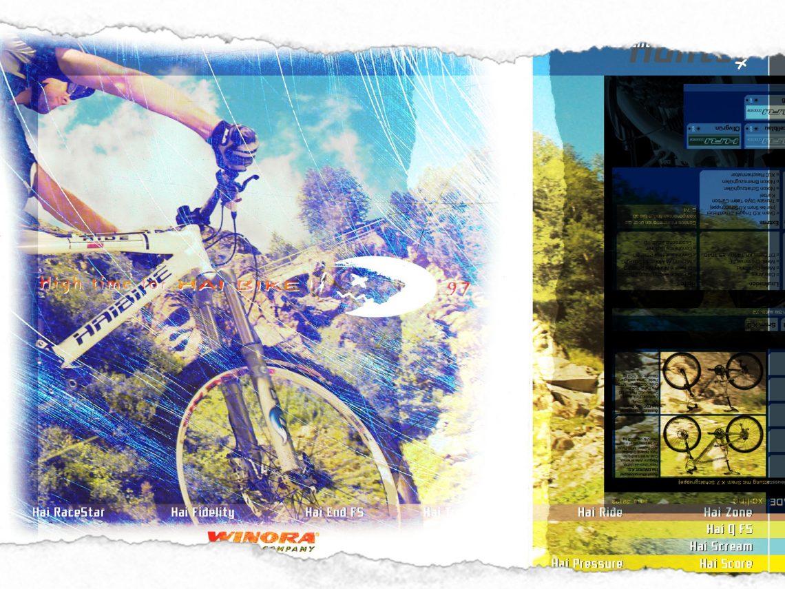 Bild-Kataloge-1140x855